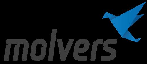 Компьютерная техника и IT-услуги — Molvers